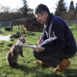 Gary Oldman shows Otto the curious Otter his Wikipedia entry on otters....